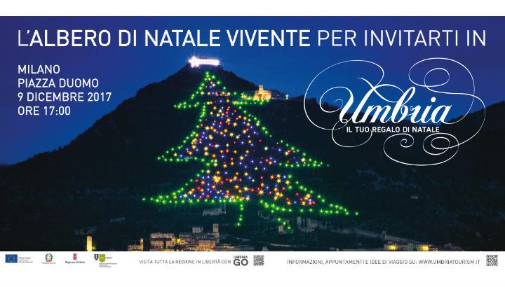 """Locandina evento """"Umbria, il tuo regalo di Natale"""" per il quale cerchiamo volontari - immagine dell'Albero di Natale di Gubbio"""