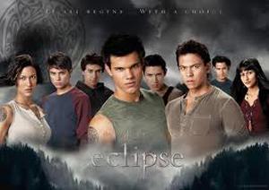 I lupi: selvaggi e animaleschi come i Quileute in Twilight!
