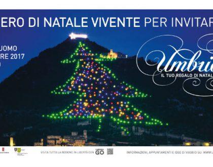 """Cerchiamo Volontari a Milano per il Flash Mob """"Umbria, il tuo regalo di Natale""""!"""